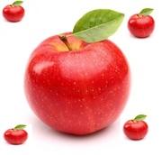 Сдам в аренду яблоневый сад  в Днепре
